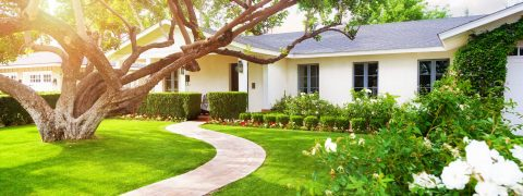 same-day-yardscapes-smart-booking-system-professional-planting